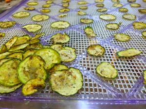 Dehydrating Zucchini for Zucchini Chips at FreshBitesDaily.com