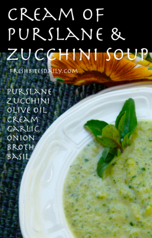 Cream of Purslane and Zucchini Soup at FreshBitesDaily.com