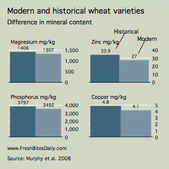 Nutrients in Historical Wheat Varieties at FreshBitesDaily.com