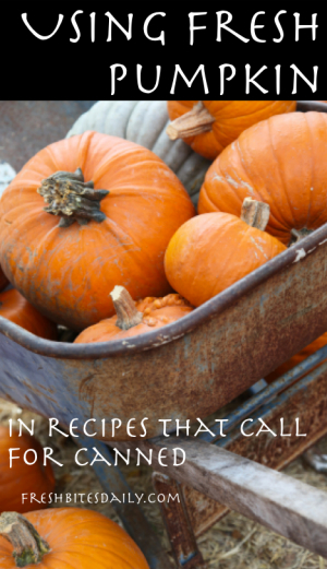 Cooking Pumpkin for Pie at FreshBitesDaily.com