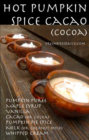 Pumpkin Spice Cacao at FreshBitesDaily.com