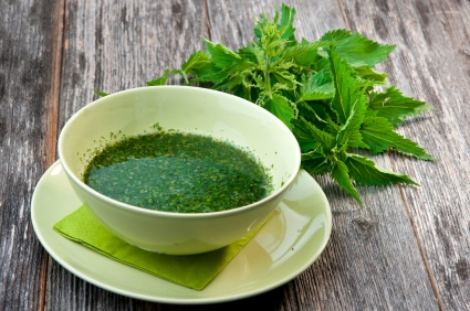 Image result for nettle soup