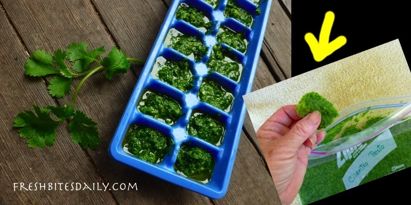 Freezing cilantro with an idea that might knock your socks off!