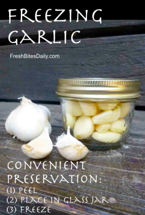 Freezing Garlic: Preserve the flavor and keep it from stinking up your freezer!