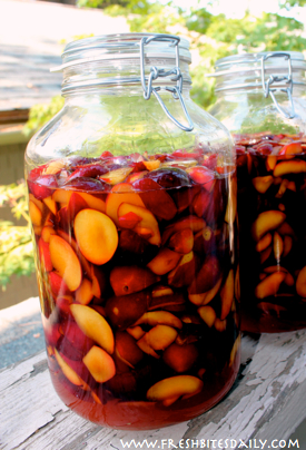 This fermented plum brandy will change the way you think about your fruit trees!