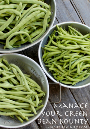Manage Your Green Bean Harvest -- Kitchen Tip from FreshBitesDaily.com