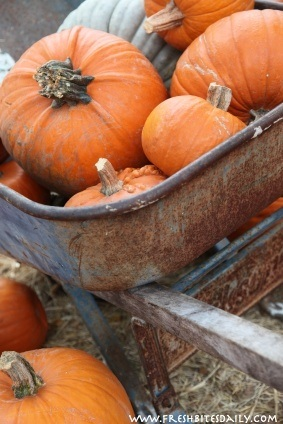 So you want to bake a pumpkin pie? Don't use pumpkin at all. Use this instead....