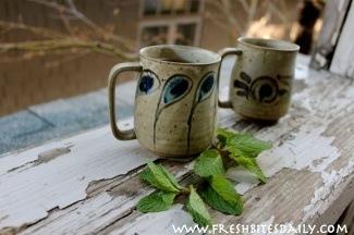 Peppermint Tea at FreshBitesDaily.com