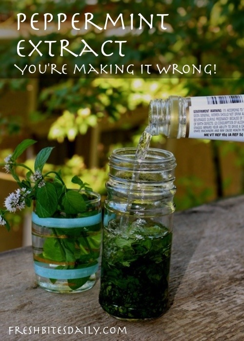 Peppermint Extract: You're making it all wrong! Two key tips you probably do not know