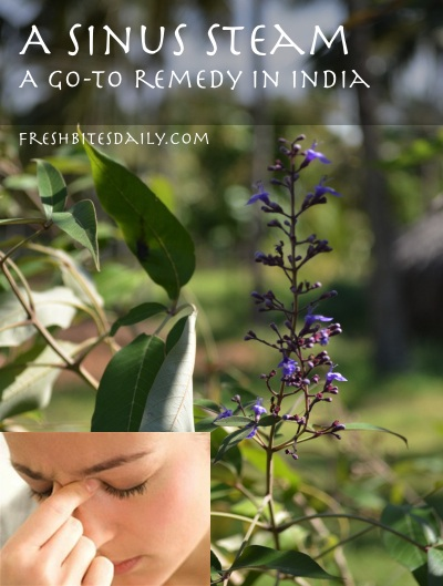 A sinus steam with a special leaf: Go-to sinus relief in India