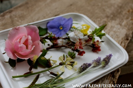 "Your edible flower starting point (salads, syrups, oils and a tale of the ""loco weed"")"