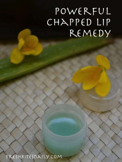 aloe vera lip balm for chapped lips