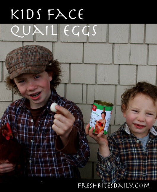 "Kids face quail eggs -- ""I don't want them to hatch in my mouth"""